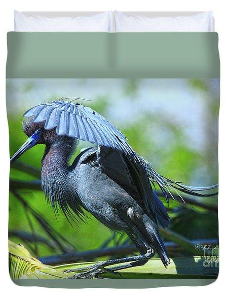 Duvet Cover featuring the photograph Little Blue Heron Alligator Farm by Deborah Benoit