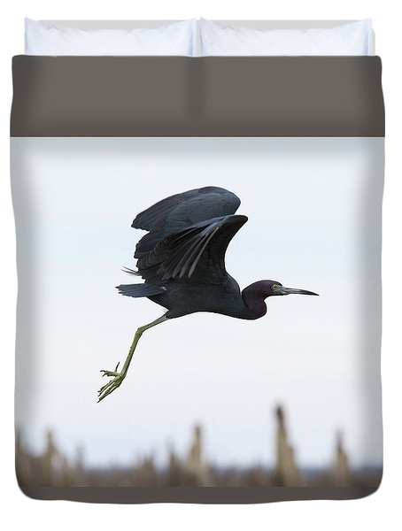 Little Blue Takes Flight Duvet Cover