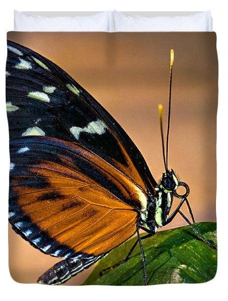 Little Butterfly Duvet Cover by Christopher Holmes