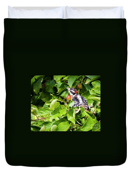 Duvet Cover featuring the photograph Little Downy Woodpecker  by Ricky L Jones