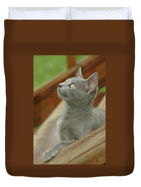 Little Gray Kitty Cat Duvet Cover