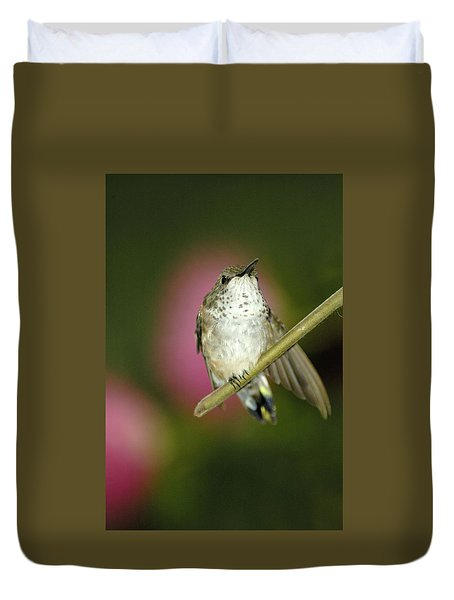 Little Humming Bird Duvet Cover