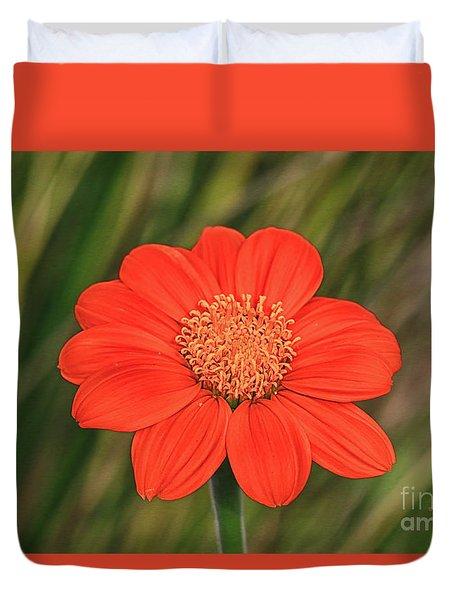 Duvet Cover featuring the photograph Little Orange Beauty by Deborah Benoit