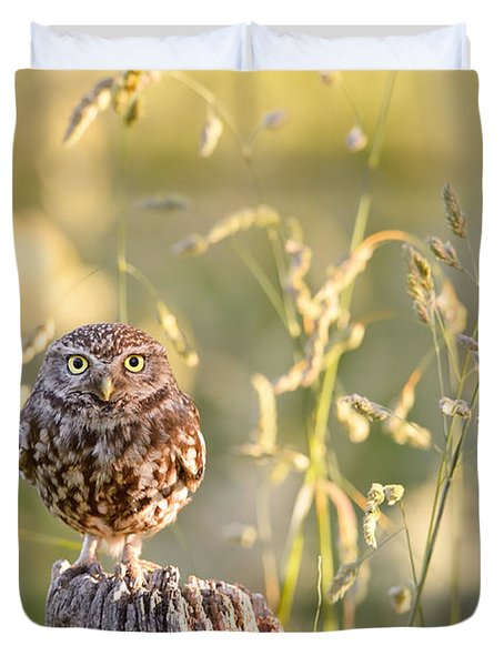 Little Owl Big World Duvet Cover