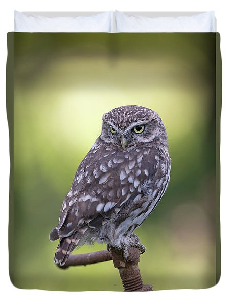 Little Owl Pipe Bender Duvet Cover