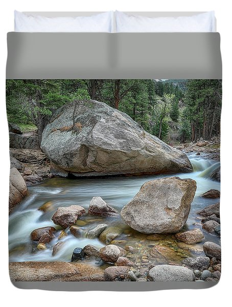 Duvet Cover featuring the photograph Little Pine Tree Stream View by James BO Insogna