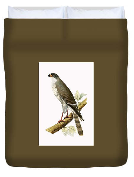 Little Red Billed Hawk Duvet Cover by English School