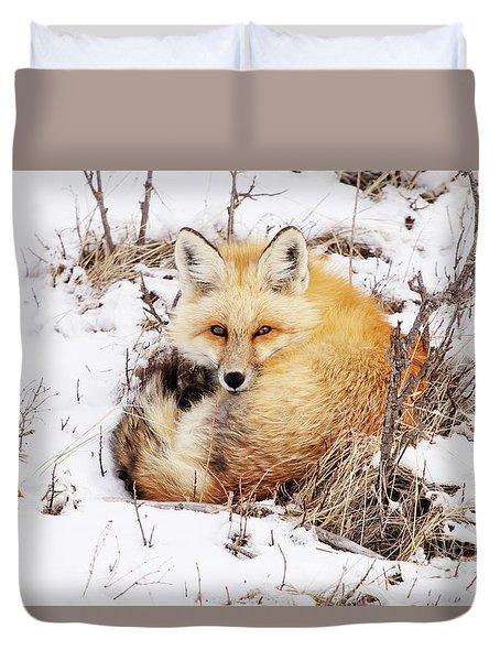 Little Red Fox Duvet Cover