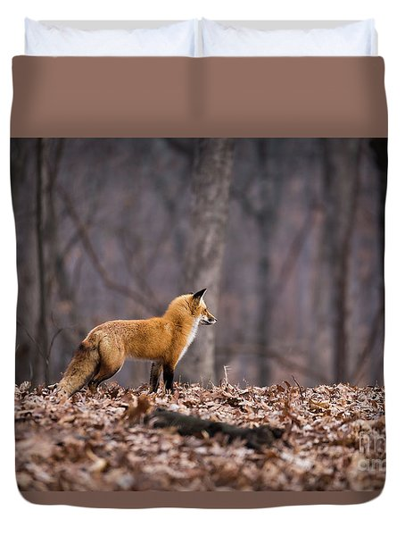 Duvet Cover featuring the photograph Little Red Fox by Andrea Silies