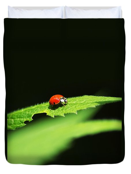 Little Red Ladybug On Green Leaf Duvet Cover by Christina Rollo