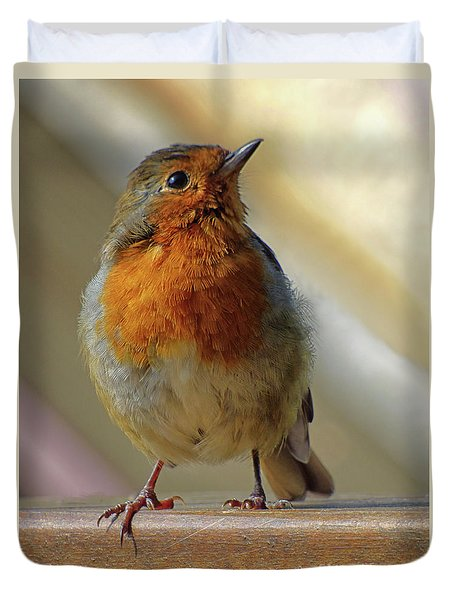 Little Robin Redbreast Duvet Cover by Lynn Bolt
