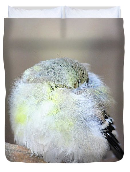 Little Sleeping Goldfinch Duvet Cover