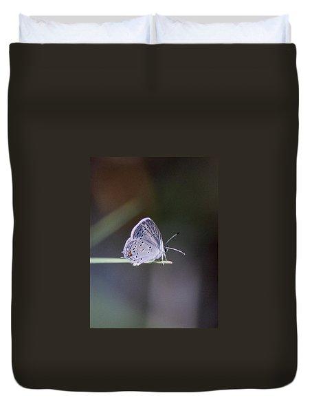Little Teeny - Butterfly Duvet Cover