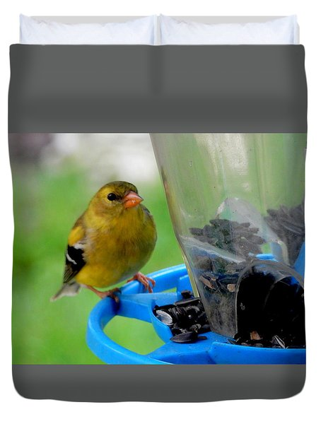 Duvet Cover featuring the photograph Little Yellow Finch by Betty-Anne McDonald
