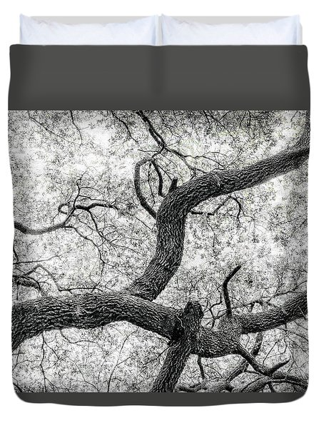 Live Oak Abstract 1 Duvet Cover