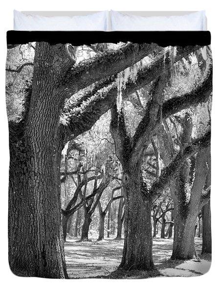 Live Oak Giants - Black And White Framing Duvet Cover by Carol Groenen