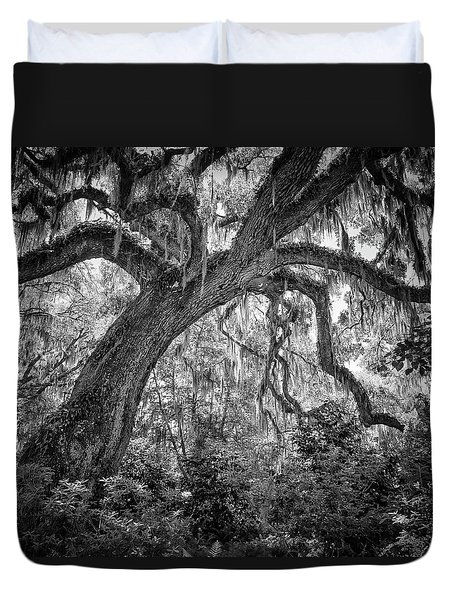Live Oak Duvet Cover