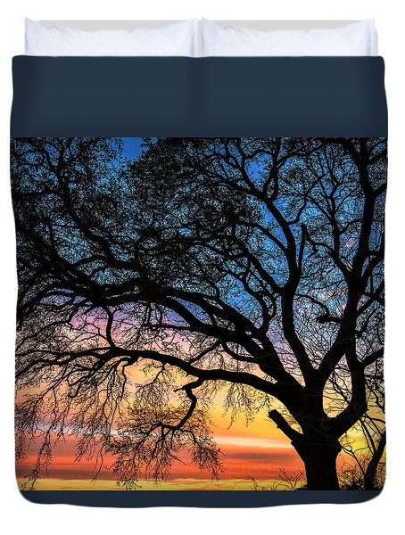 Live Oak Under A Rainbow Sky Duvet Cover