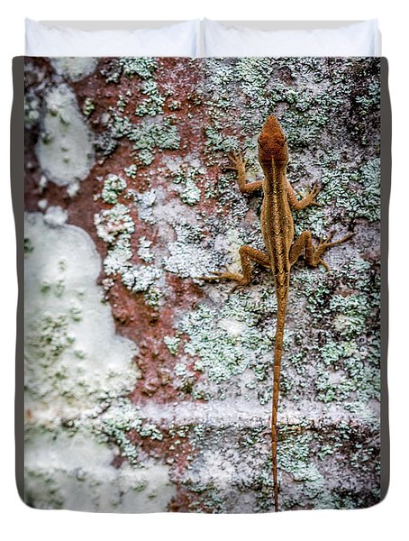 Lizard And Lichen On Brick Duvet Cover