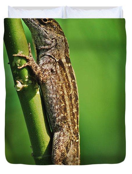Lizard Duvet Cover by Michael Peychich