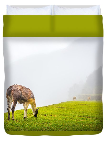 Duvet Cover featuring the photograph Llama  by Gary Gillette