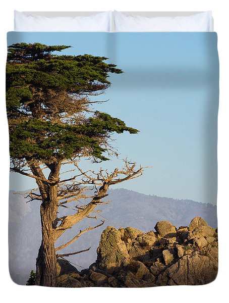 Lone Cypress Tree  Duvet Cover