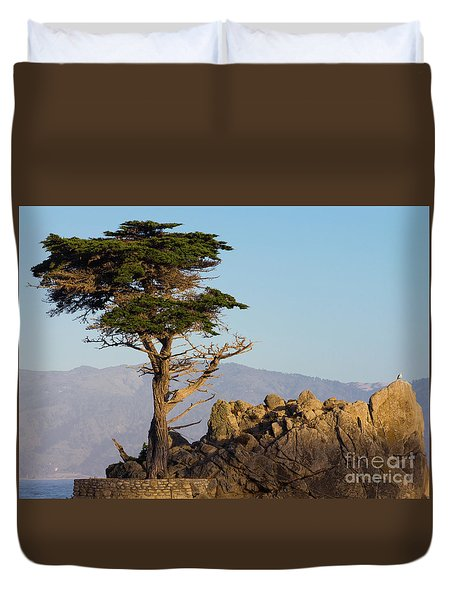 Lone Cypress Tree  Duvet Cover