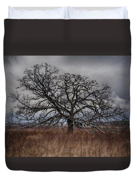 Loan Oak II Duvet Cover by Dan Hefle