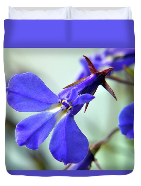 Duvet Cover featuring the photograph Lobelia Erinus by Terence Davis