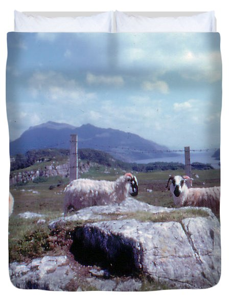 Loch Maree Scotland Sheep Grazing Duvet Cover
