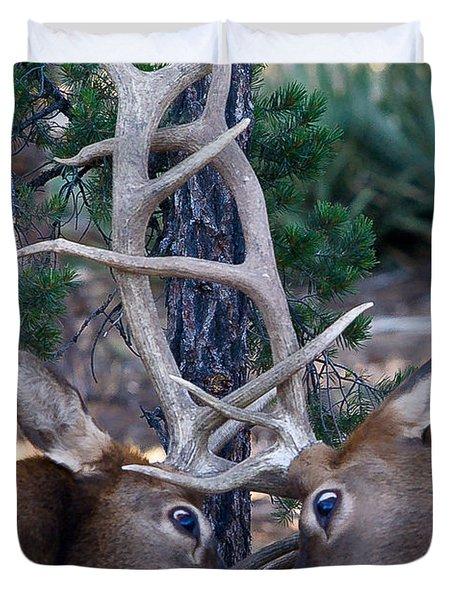 Locking Horns - Well Antlers Duvet Cover