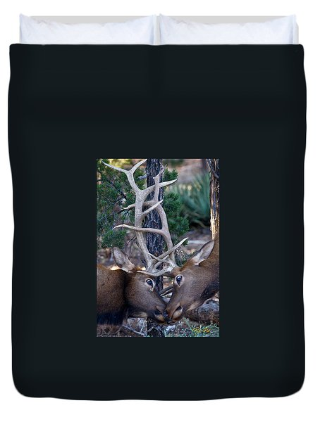 Locking Horns - Well Antlers Duvet Cover by Rikk Flohr