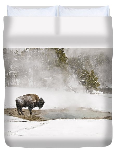 Duvet Cover featuring the photograph Bison Keeping Warm by Gary Lengyel