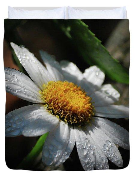 Lone Daisy Duvet Cover