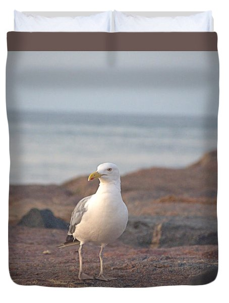 Duvet Cover featuring the photograph Lone Gull by  Newwwman