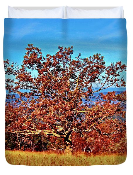 Lone Mountain Tree Duvet Cover