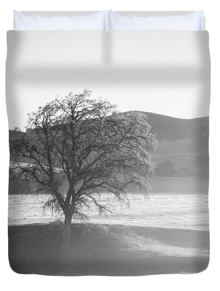 Lone Oak, Clearing Fog, San Andreas Rift Valley Duvet Cover