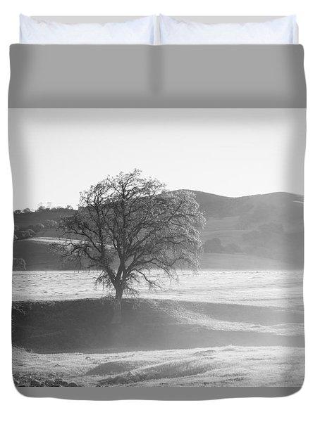 Lone Oak, Clearing Fog, San Andreas Rift Valley Duvet Cover