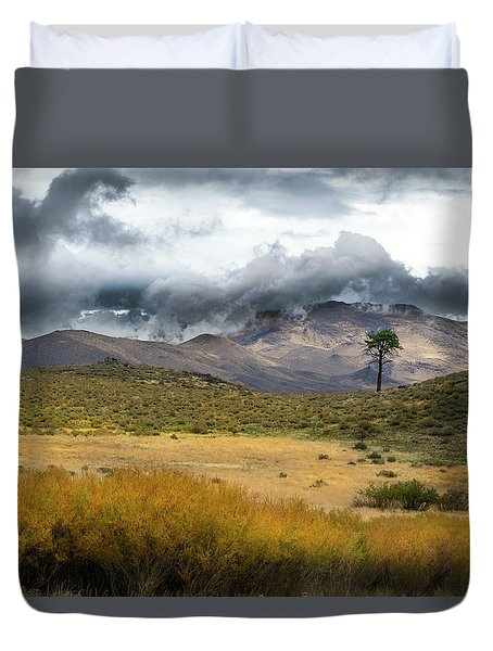 Duvet Cover featuring the photograph Lone Pine High Desert Nevada by Frank Wilson