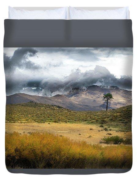 Lone Pine High Desert Nevada Duvet Cover by Frank Wilson