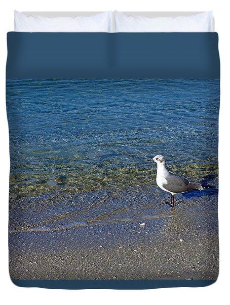 Lone Seagull At Miramar Beach In Naples Duvet Cover