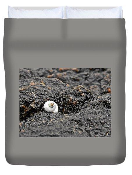 Lone Seashell Duvet Cover