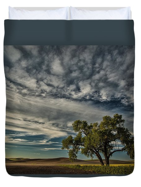 Lone Tree In Field Duvet Cover