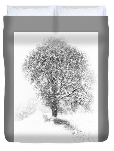 Lone Tree On A Winter Country Road Duvet Cover