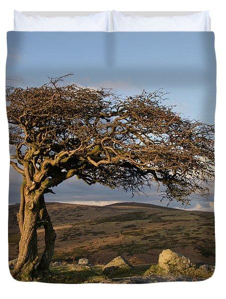 Lone Tree On Dartmoor Duvet Cover