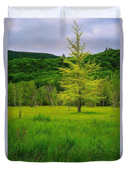 Lone Tree Sieur De Mont Woodland Acadia Duvet Cover