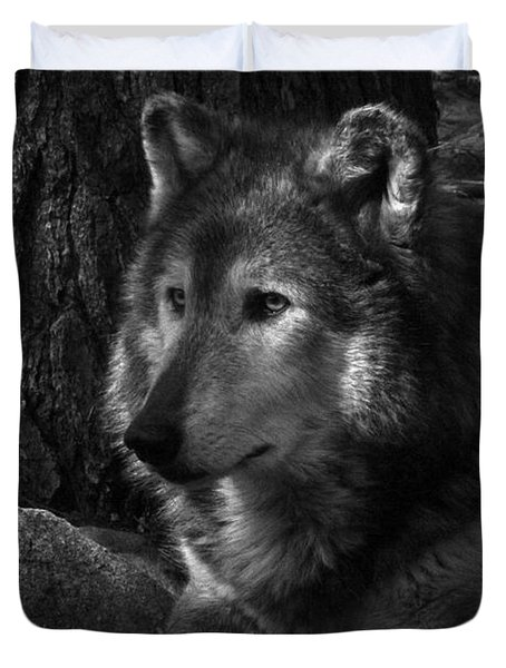 Lone Wolf Duvet Cover by Karol Livote
