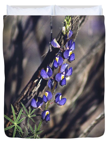 Lonely Lupine Duvet Cover