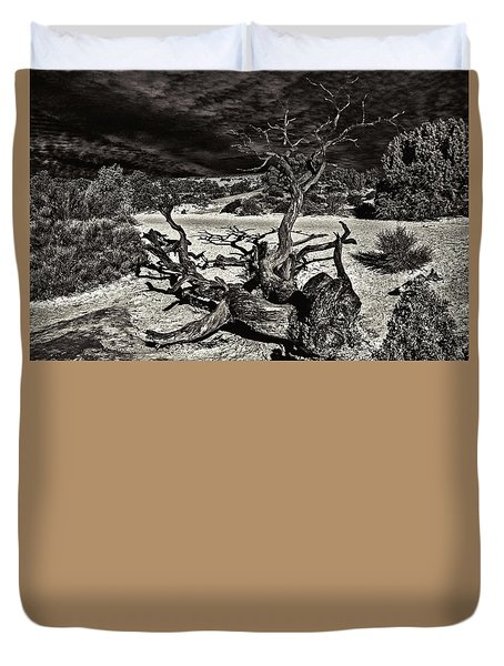 Lonely Tree #4  Duvet Cover by Alex Galkin