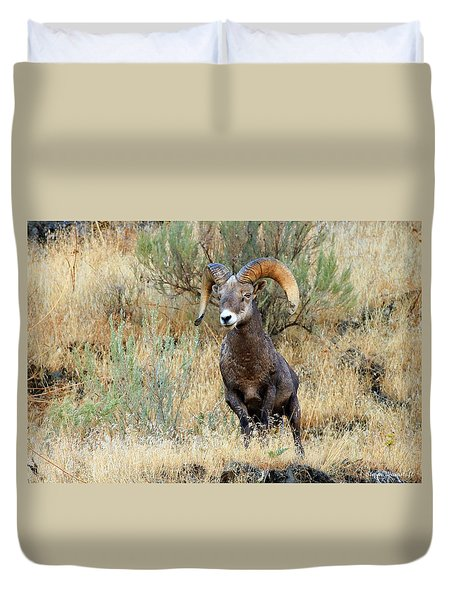 Loner IIi Duvet Cover by Steve Warnstaff